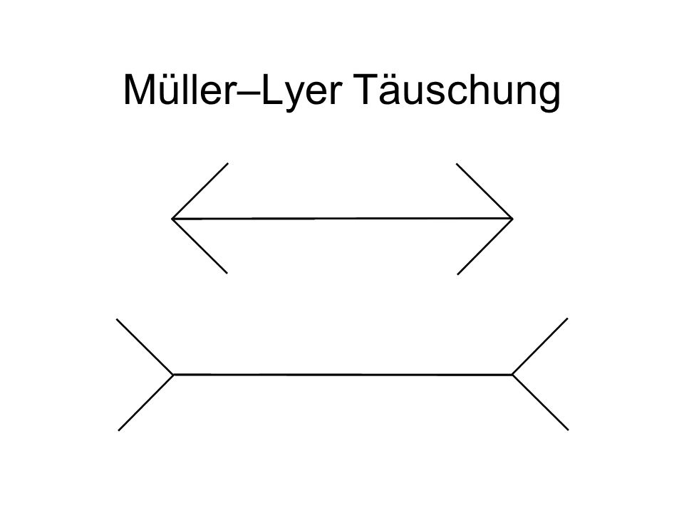 Müller–Lyer Täuschung