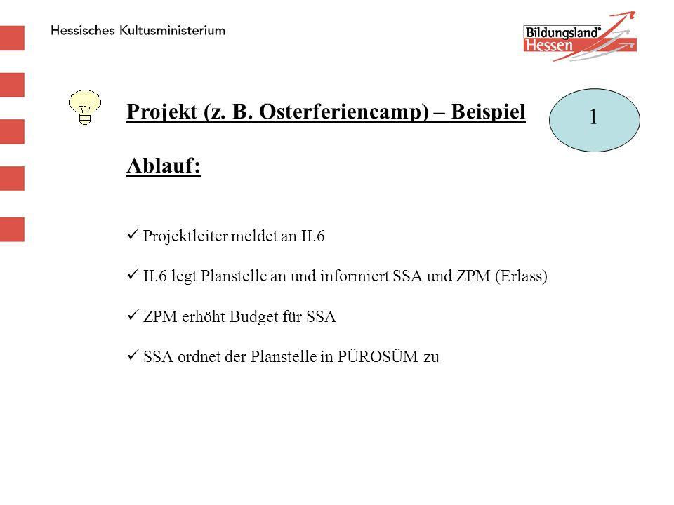 Projekt (z. B. Osterferiencamp) – Beispiel Ablauf: Projektleiter meldet an II.6 II.6 legt Planstelle an und informiert SSA und ZPM (Erlass) ZPM erhöht