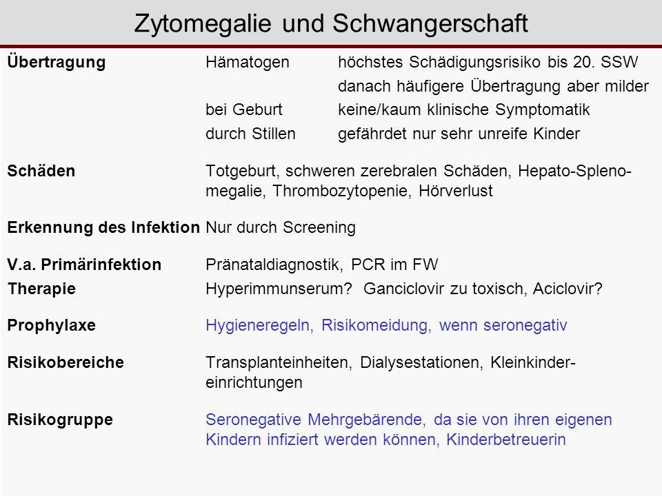 ÜbertragungHämatogenhöchstes Schädigungsrisiko bis 20. SSW danach häufigere Übertragung aber milder bei Geburt keine/kaum klinische Symptomatik durch
