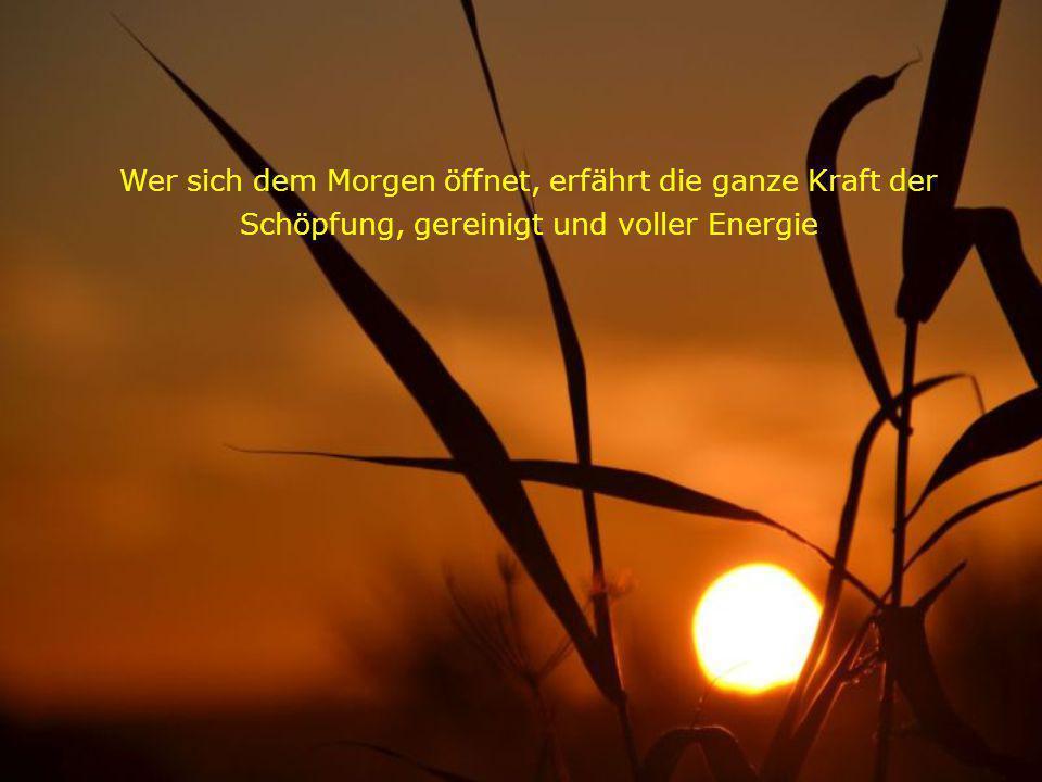 Wer sich dem Morgen öffnet, erfährt die ganze Kraft der Schöpfung, gereinigt und voller Energie
