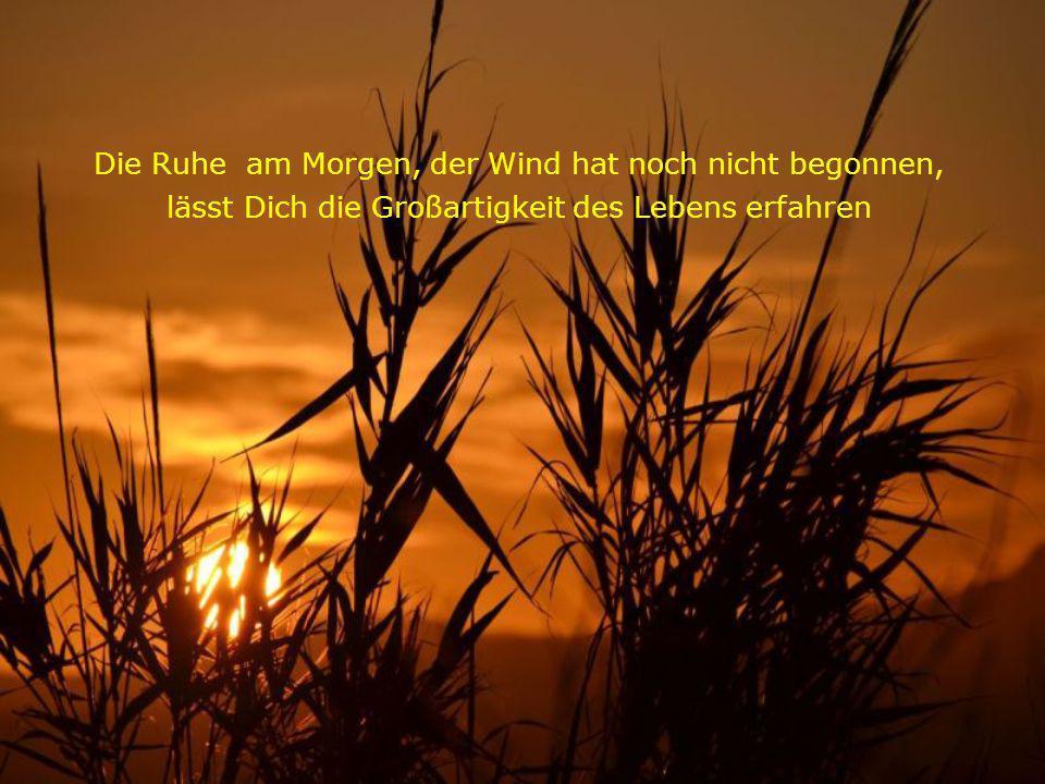Die Ruhe am Morgen, der Wind hat noch nicht begonnen, lässt Dich die Großartigkeit des Lebens erfahren