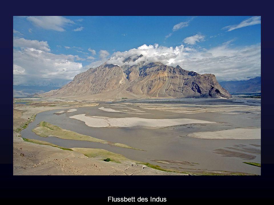 Flussbett des Indus