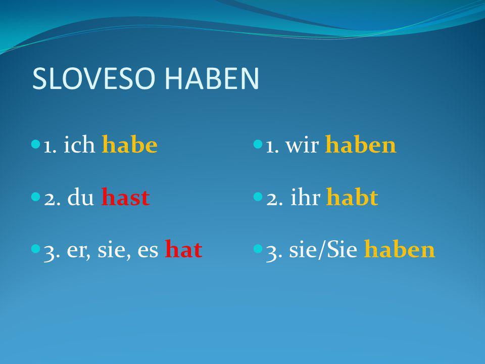 SLOVESO HABEN 1. ich habe 2. du hast 3. er, sie, es hat 1. wir haben 2. ihr habt 3. sie/Sie haben