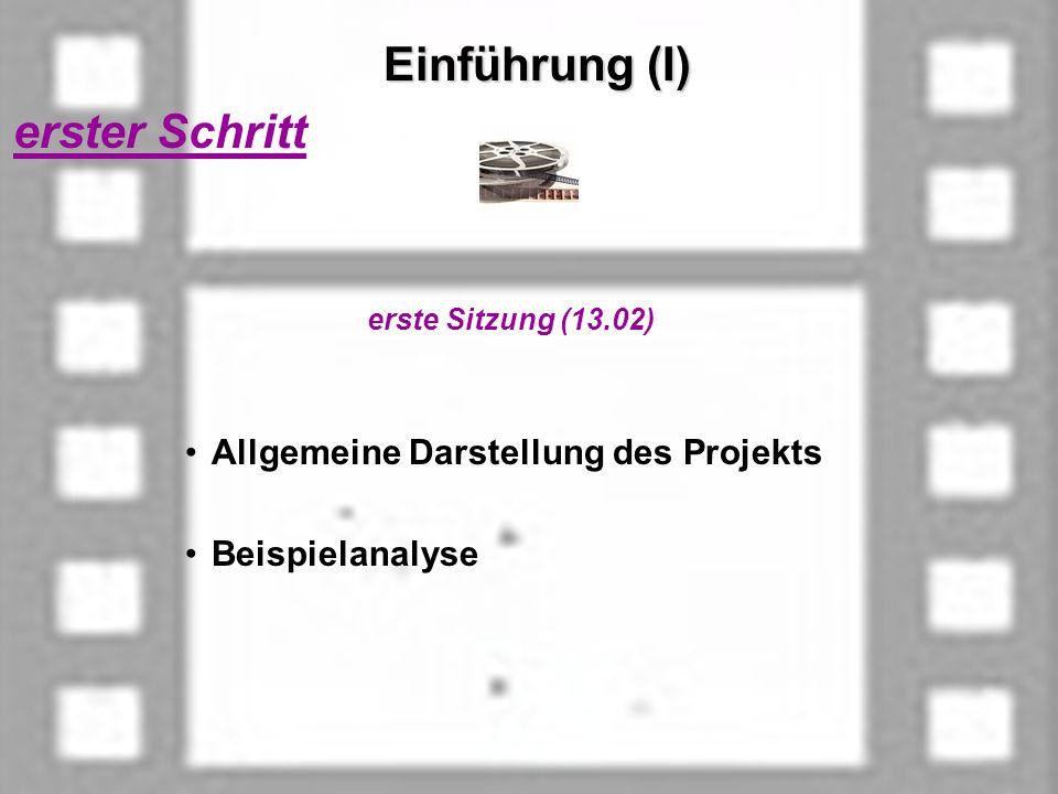 Einführung (I) erster Schritt erste Sitzung (13.02) Allgemeine Darstellung des Projekts Beispielanalyse