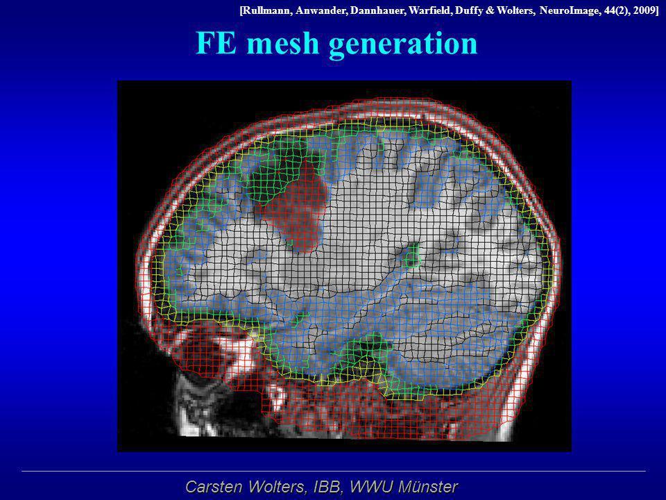 Carsten Wolters, IBB, WWU Münster FE mesh generation [Rullmann, Anwander, Dannhauer, Warfield, Duffy & Wolters, NeuroImage, 44(2), 2009]