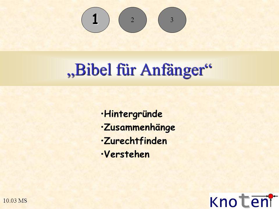 Bibel für Anfänger Hintergründe Zusammenhänge Zurechtfinden Verstehen 10.03 MS 1 23