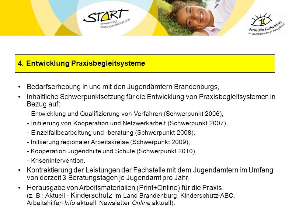 4. Entwicklung Praxisbegleitsysteme Bedarfserhebung in und mit den Jugendämtern Brandenburgs, Inhaltliche Schwerpunktsetzung für die Entwicklung von P