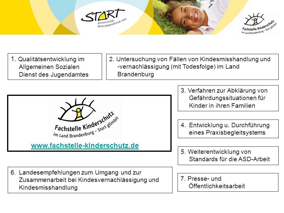 2. Untersuchung von Fällen von Kindesmisshandlung und -vernachlässigung (mit Todesfolge) im Land Brandenburg 3. Verfahren zur Abklärung von Gefährdung