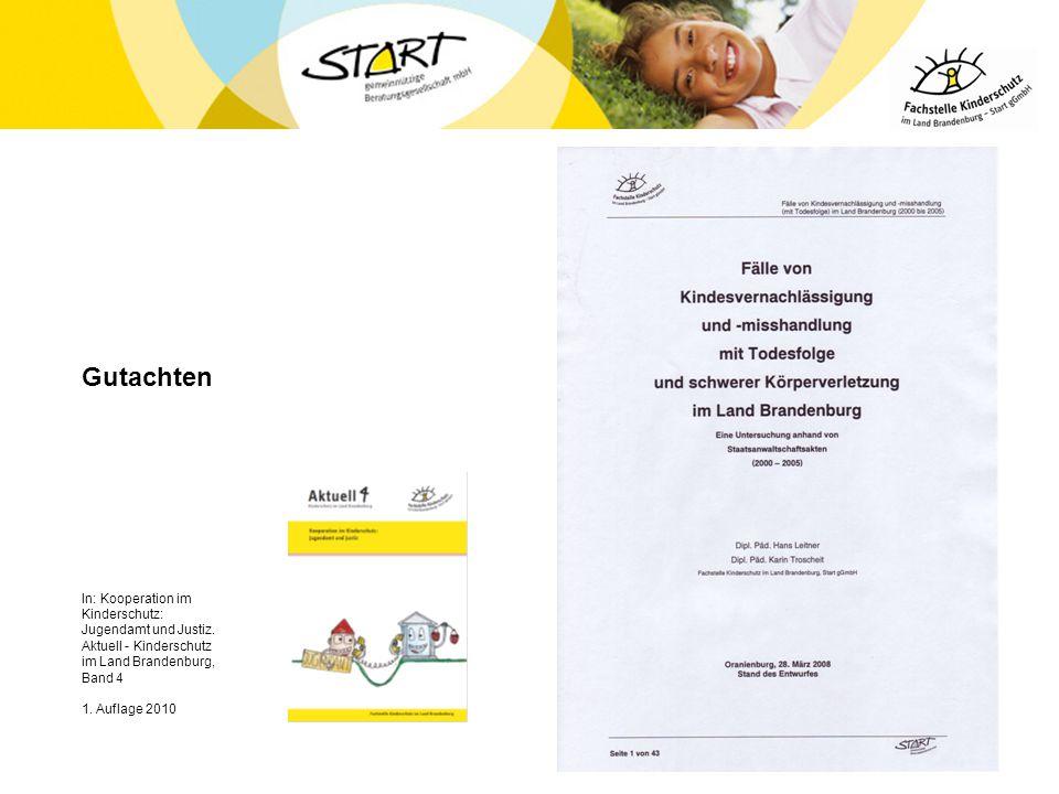 Gutachten In: Kooperation im Kinderschutz: Jugendamt und Justiz. Aktuell - Kinderschutz im Land Brandenburg, Band 4 1. Auflage 2010