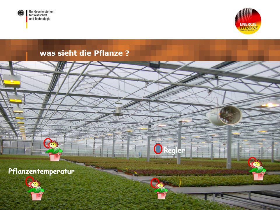 Pflanzentemperatur Regler was sieht die Pflanze ?