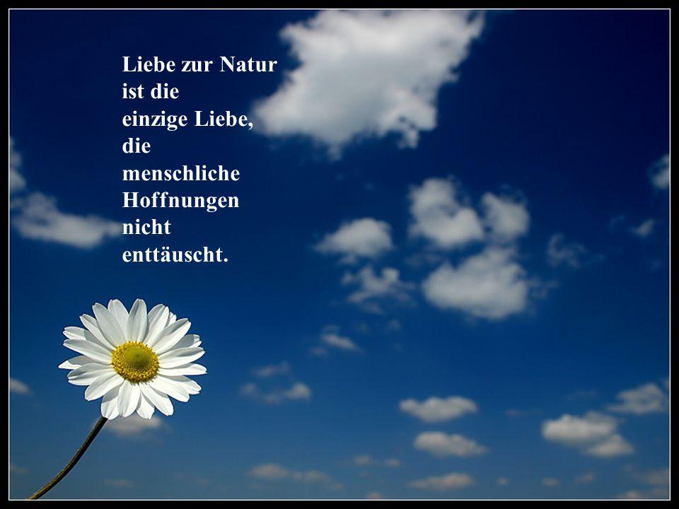 Liebe zur Natur ist die einzige Liebe, die menschliche Hoffnungen nicht enttäuscht.