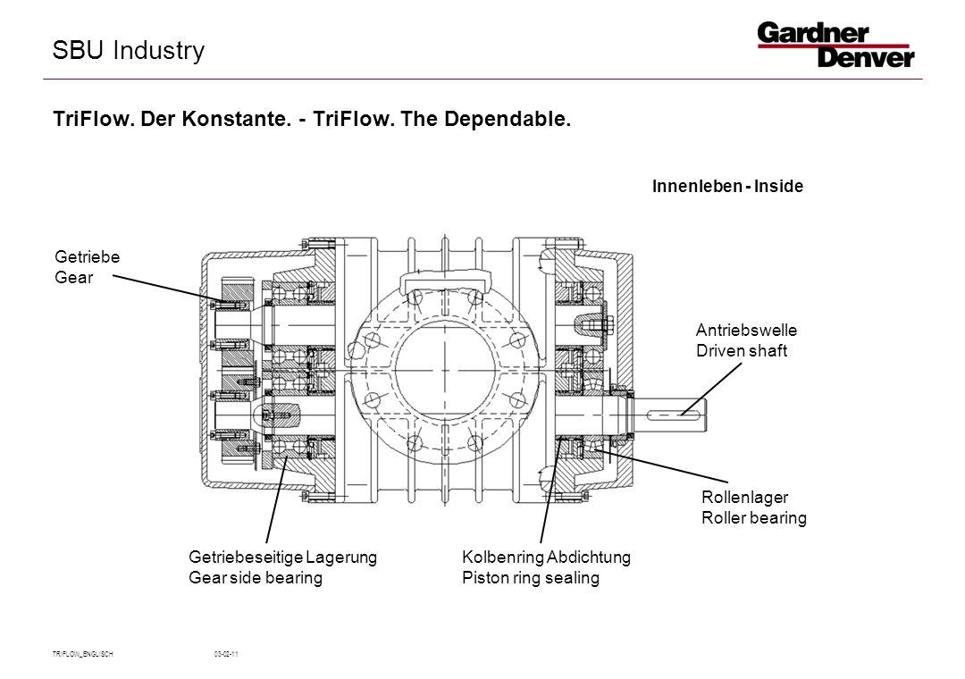 SBU Industry TRIFLOW_ENGLISCH 03-02-11 TriFlow.Der Konstante.