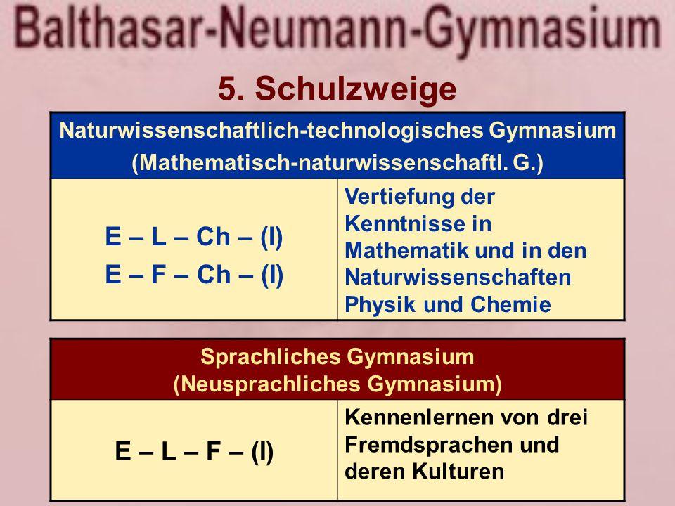 5. Schulzweige Naturwissenschaftlich-technologisches Gymnasium (Mathematisch-naturwissenschaftl.