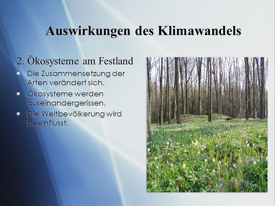 Auswirkungen des Klimawandels 2. Ökosysteme am Festland Die Zusammensetzung der Arten verändert sich. Ökosysteme werden auseinandergerissen. Die Weltb