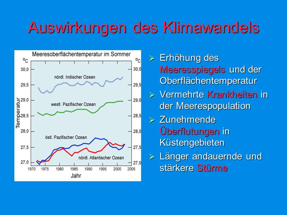 Auswirkungen des Klimawandels Erhöhung des Meeresspiegels und der Oberflächentemperatur Erhöhung des Meeresspiegels und der Oberflächentemperatur Vermehrte Krankheiten in der Meerespopulation Vermehrte Krankheiten in der Meerespopulation Zunehmende Überflutungen in Küstengebieten Zunehmende Überflutungen in Küstengebieten Länger andauernde und stärkere Stürme Länger andauernde und stärkere Stürme
