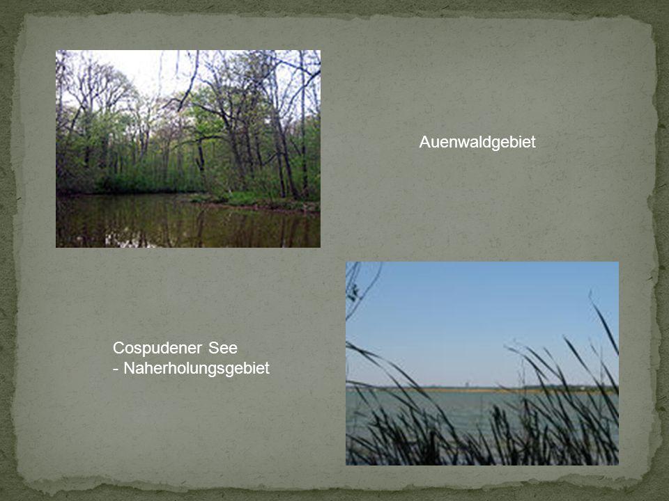 Auenwaldgebiet Cospudener See - Naherholungsgebiet