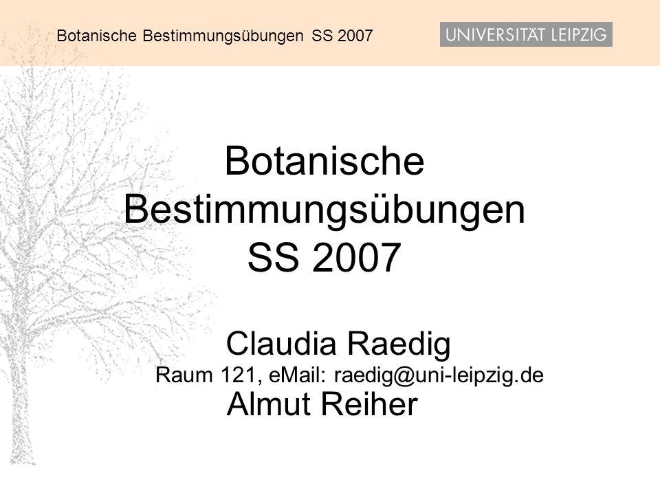 Botanische Bestimmungsübungen SS 2007 27.05.201422 Glechoma hederacea –weibliche Blüte