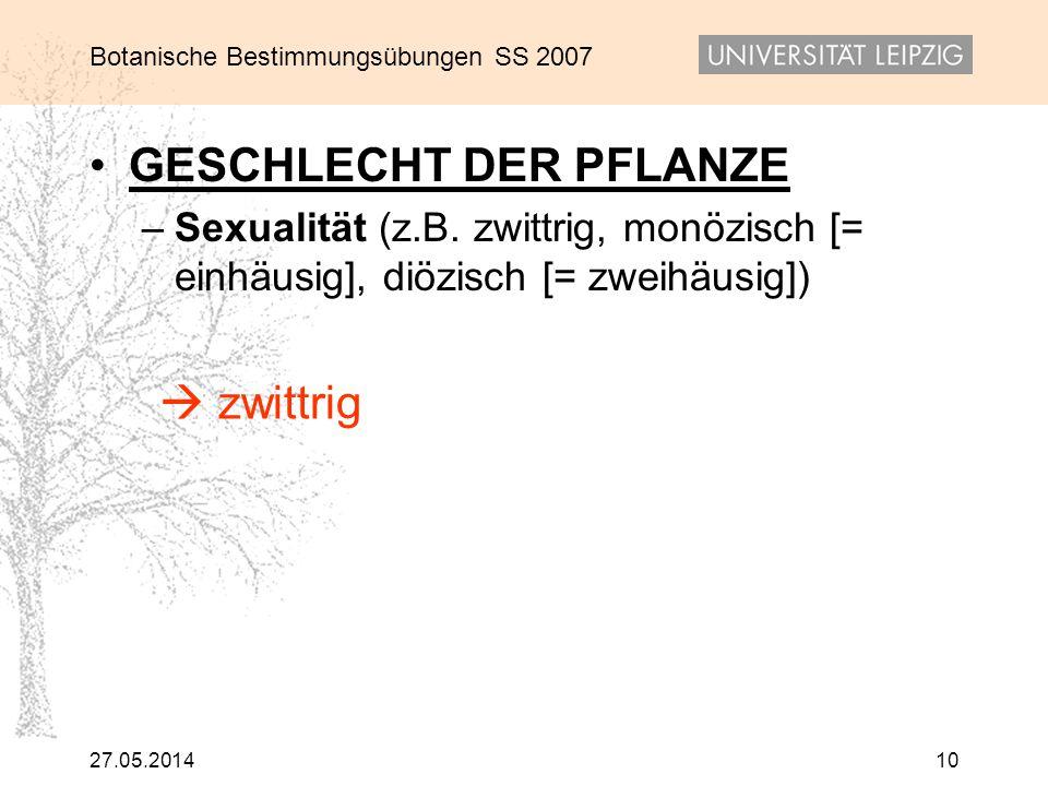 Botanische Bestimmungsübungen SS 2007 27.05.201410 GESCHLECHT DER PFLANZE – Sexualität (z.B. zwittrig, monözisch [= einhäusig], diözisch [= zweihäusig