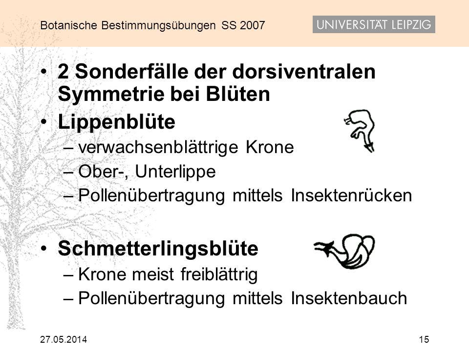 Botanische Bestimmungsübungen SS 2007 27.05.201415 2 Sonderfälle der dorsiventralen Symmetrie bei Blüten Lippenblüte –verwachsenblättrige Krone –Ober-
