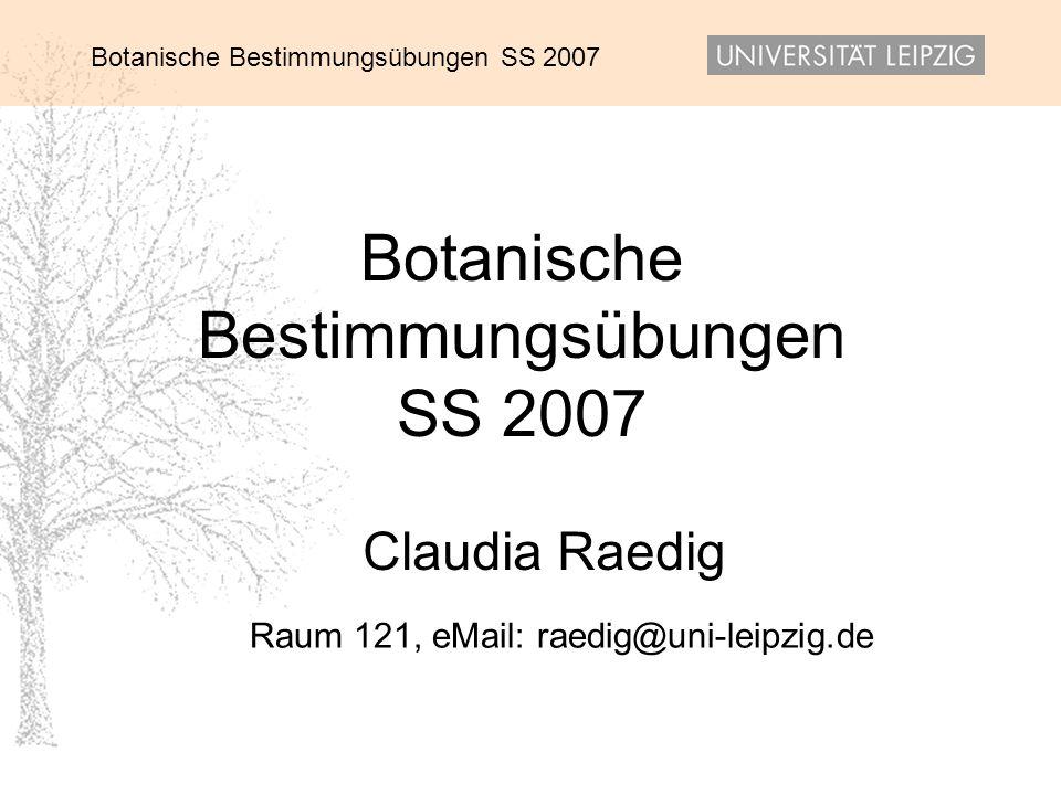 Botanische Bestimmungsübungen SS 2007 Claudia Raedig Raum 121, eMail: raedig@uni-leipzig.de