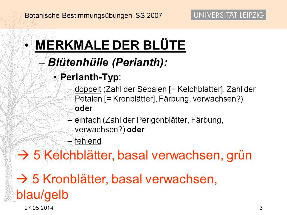 Botanische Bestimmungsübungen SS 2007 27.05.20143 MERKMALE DER BLÜTE – Blütenhülle (Perianth): Perianth-Typ: – doppelt (Zahl der Sepalen [= Kelchblätt