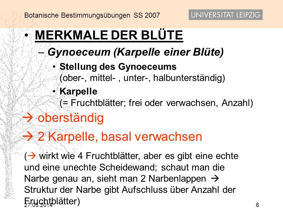 Botanische Bestimmungsübungen SS 2007 27.05.20147 MERKMALE DER BLÜTE – Blütenformel (z.B.