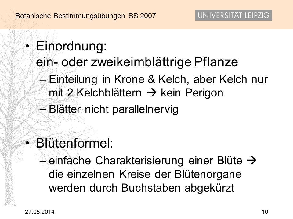 Botanische Bestimmungsübungen SS 2007 27.05.201410 Einordnung: ein- oder zweikeimblättrige Pflanze –Einteilung in Krone & Kelch, aber Kelch nur mit 2