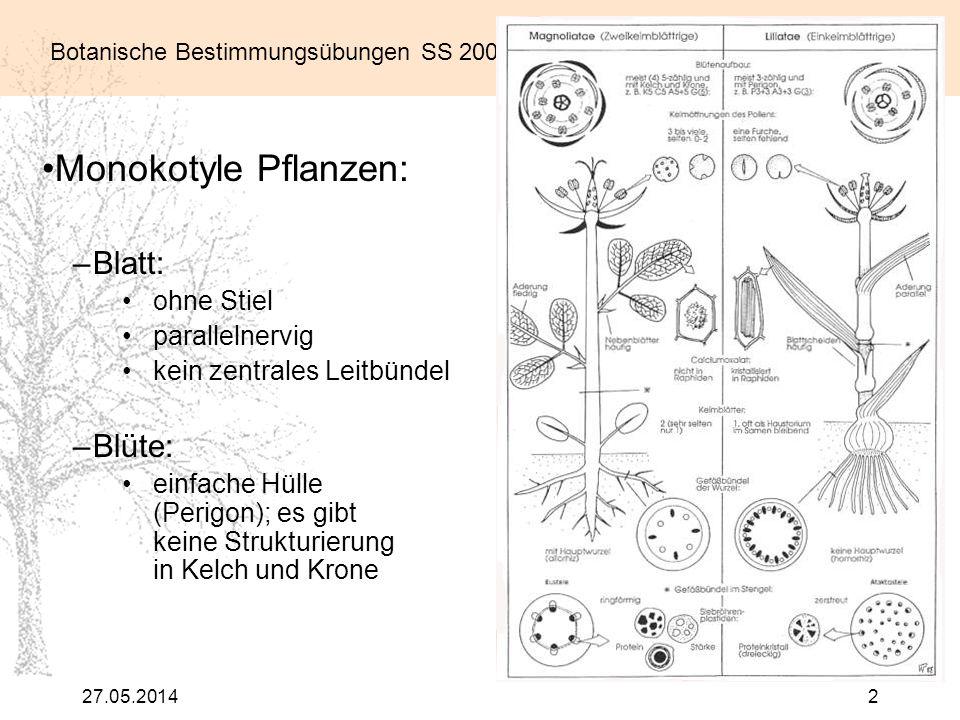 Botanische Bestimmungsübungen SS 2007 27.05.20142 Monokotyle Pflanzen: –Blatt: ohne Stiel parallelnervig kein zentrales Leitbündel –Blüte: einfache Hü