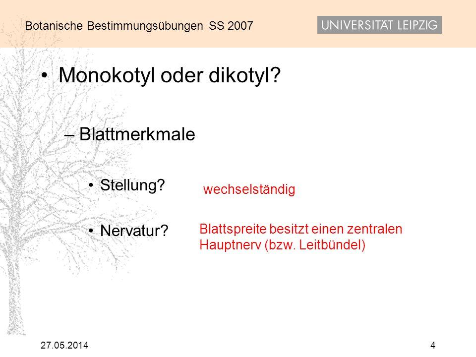 Botanische Bestimmungsübungen SS 2007 27.05.20144 Monokotyl oder dikotyl? –Blattmerkmale Stellung? Nervatur? wechselständig Blattspreite besitzt einen