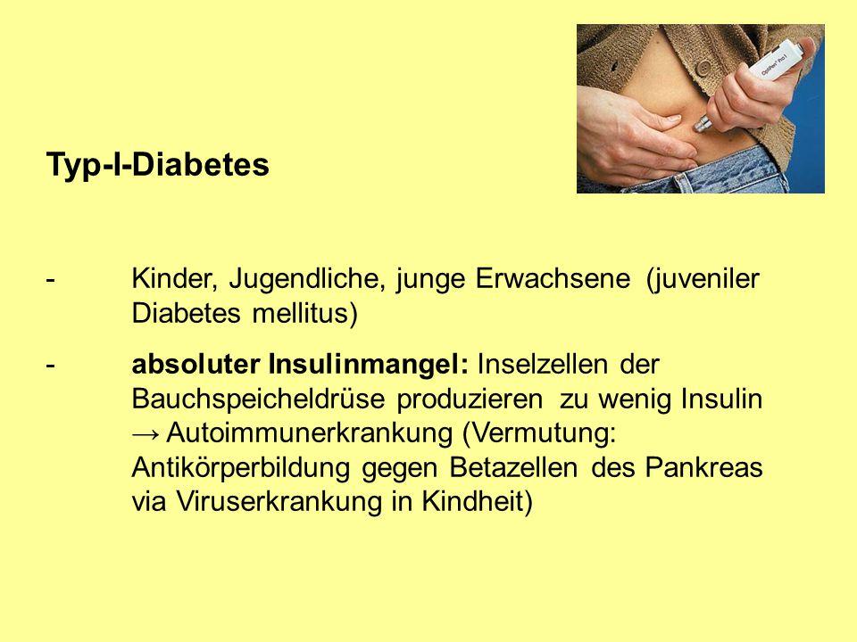 Typ-I-Diabetes -Kinder, Jugendliche, junge Erwachsene (juveniler Diabetes mellitus) -absoluter Insulinmangel: Inselzellen der Bauchspeicheldrüse produ
