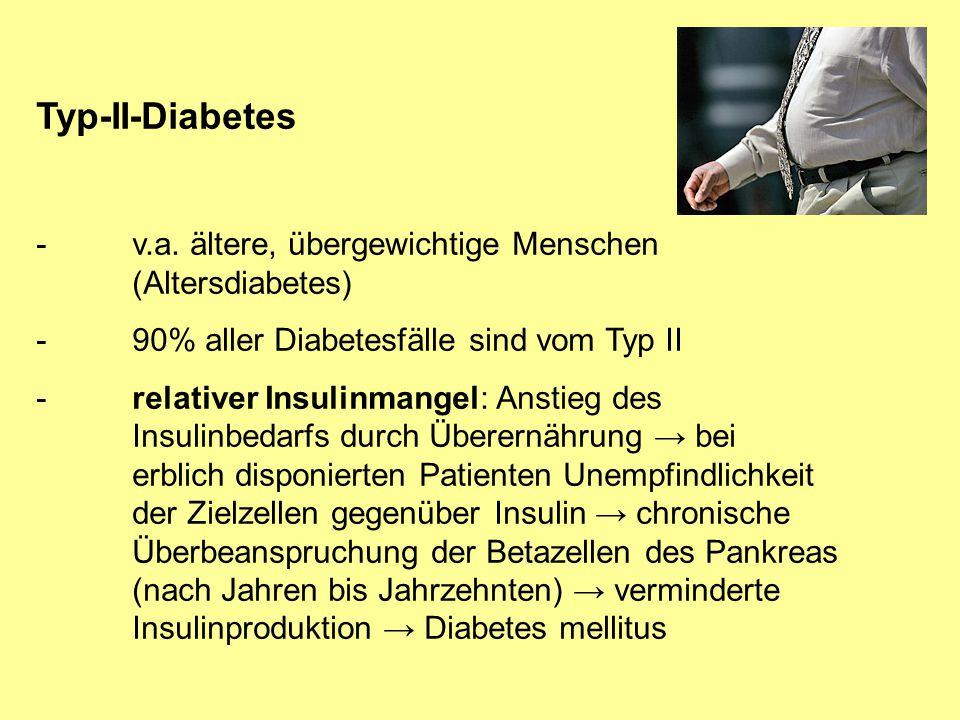 Typ-II-Diabetes -v.a. ältere, übergewichtige Menschen (Altersdiabetes) -90% aller Diabetesfälle sind vom Typ II -relativer Insulinmangel: Anstieg des