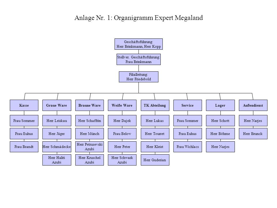 Anlage Nr. 1: Organigramm Expert Megaland Stellver. Geschäftsführung: Frau Brinkmann Geschäftsführung: Herr Brinkmann, Herr Kopp Filialleitung: Herr F