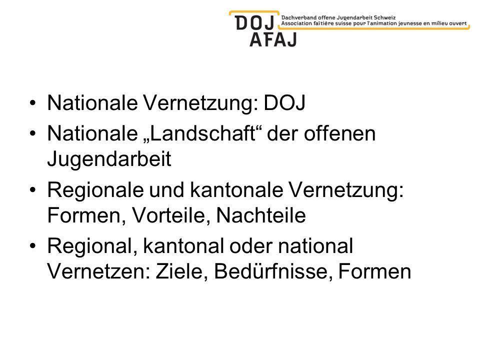 Nationale Vernetzung: DOJ Nationale Landschaft der offenen Jugendarbeit Regionale und kantonale Vernetzung: Formen, Vorteile, Nachteile Regional, kantonal oder national Vernetzen: Ziele, Bedürfnisse, Formen