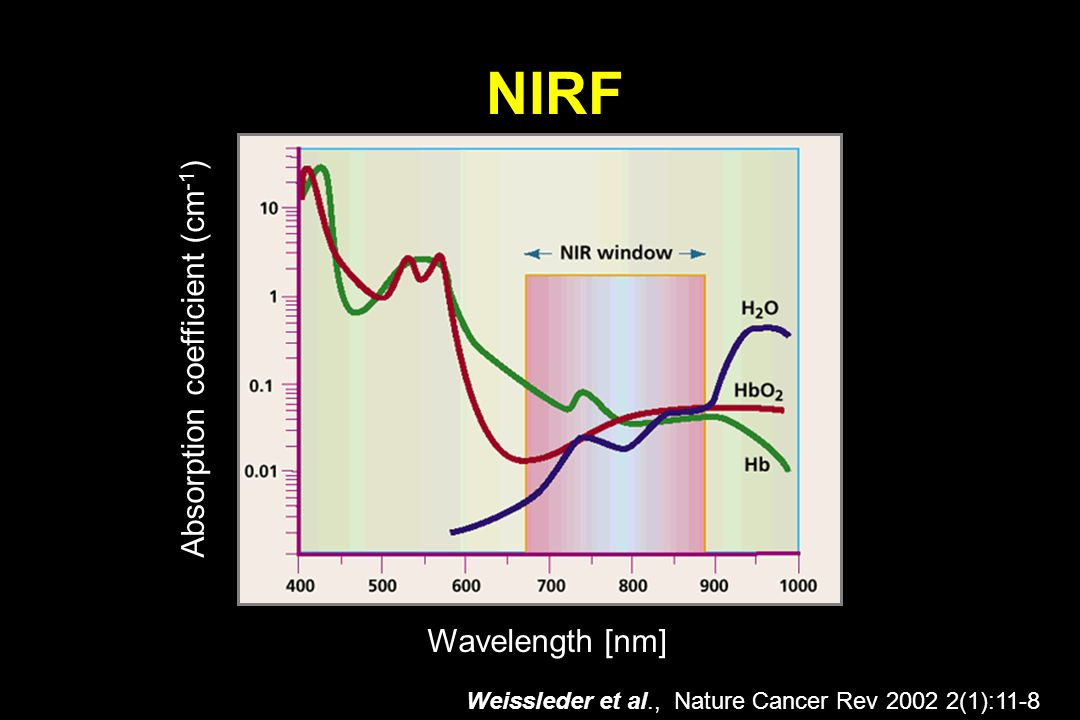 NIRF Weissleder et al., Nature Cancer Rev 2002 2(1):11-8 Wavelength [nm] Absorption coefficient (cm -1 )