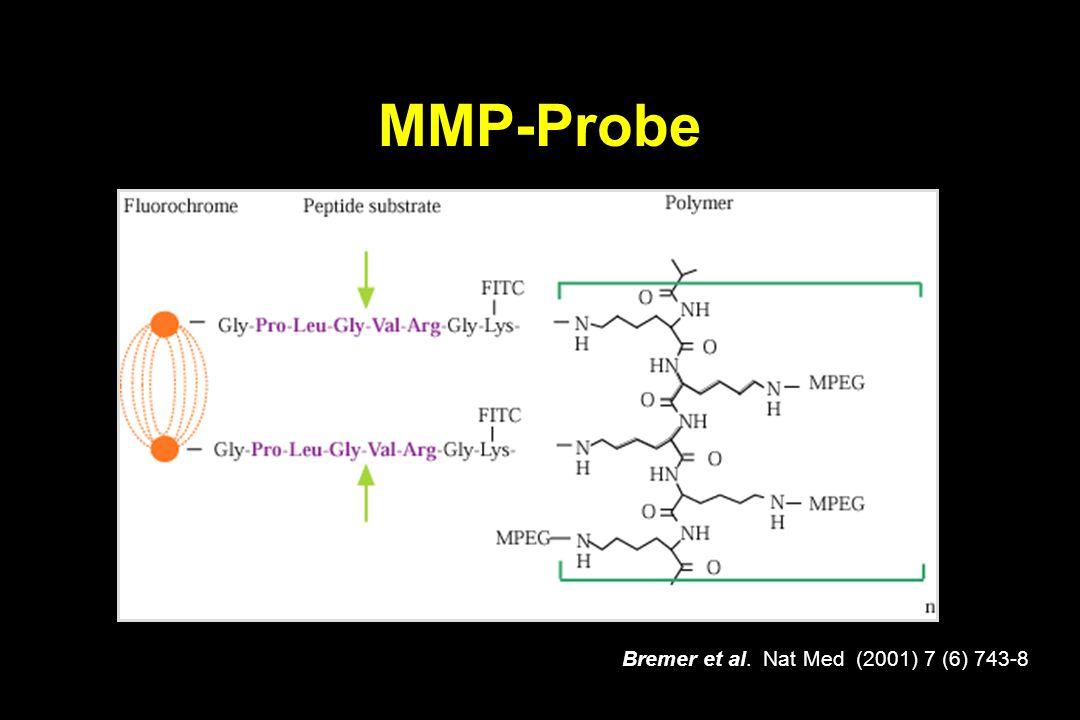 MMP-Probe Bremer et al. Nat Med (2001) 7 (6) 743-8
