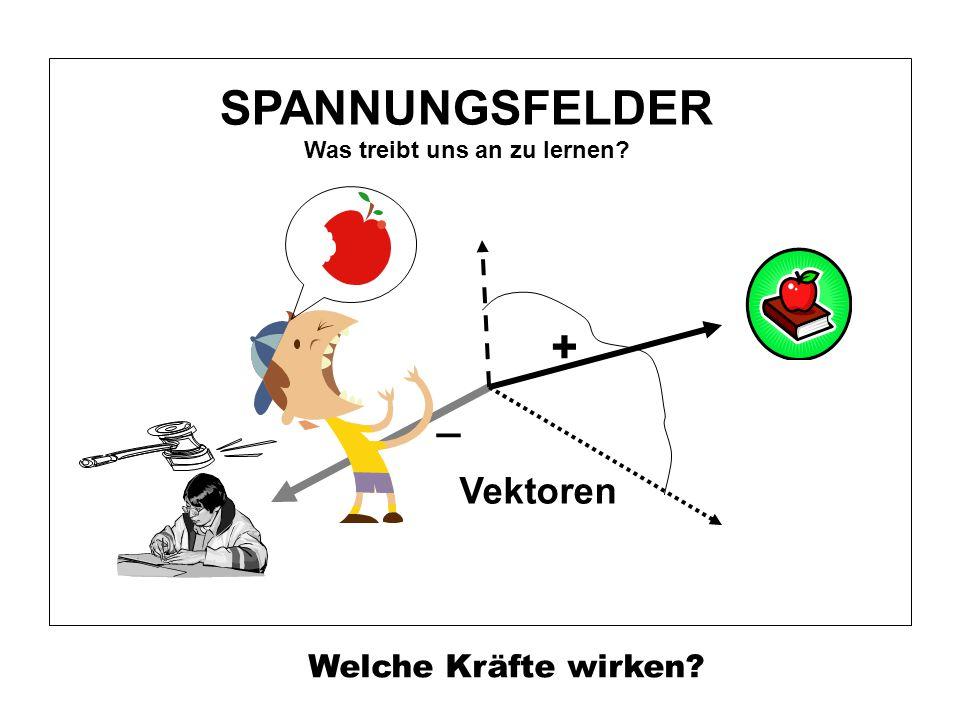 _ Vektoren SPANNUNGSFELDER Was treibt uns an zu lernen? Welche Kräfte wirken?