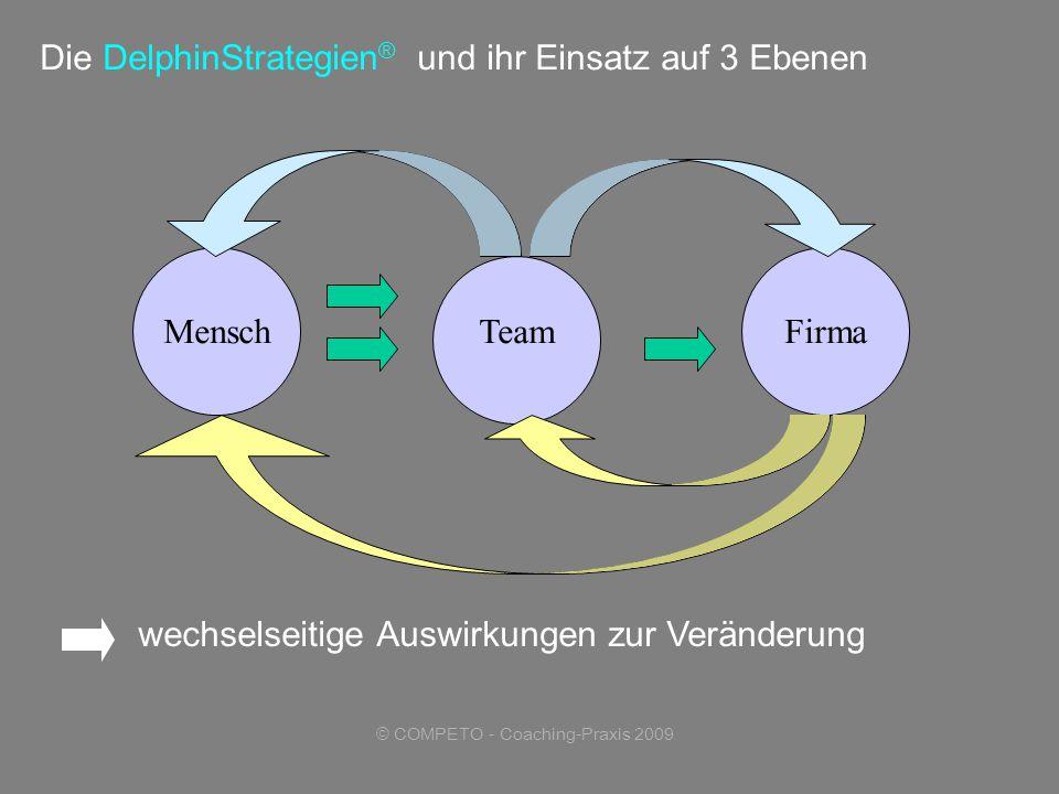 © COMPETO - Coaching-Praxis 2009 Die DelphinStrategien ® und ihr Einsatz auf 3 Ebenen wechselseitige Auswirkungen zur Veränderung MenschTeamFirma