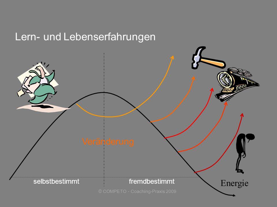 © COMPETO - Coaching-Praxis 2009 selbstbestimmtfremdbestimmt Lern- und Lebenserfahrungen Veränderung Energie