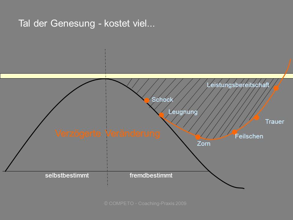 © COMPETO - Coaching-Praxis 2009 selbstbestimmtfremdbestimmt Leugnung Zorn Leistungsbereitschaft Tal der Genesung - kostet viel...