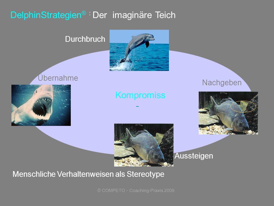 © COMPETO - Coaching-Praxis 2009 DelphinStrategien ® : Der imaginäre Teich Menschliche Verhaltenweisen als Stereotype Durchbruch Übernahme Kompromiss Aussteigen Nachgeben