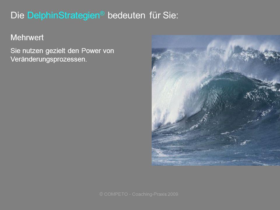 © COMPETO - Coaching-Praxis 2009 Mehrwert Sie nutzen gezielt den Power von Veränderungsprozessen.