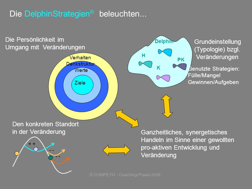 © COMPETO - Coaching-Praxis 2009 Die DelphinStrategien ® beleuchten...