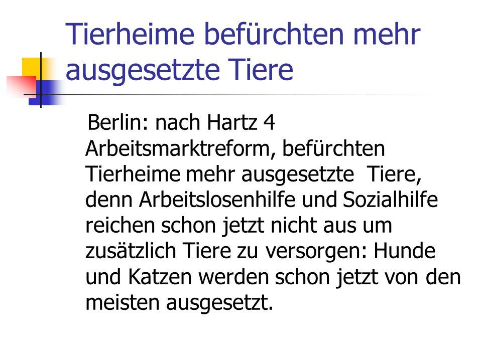 Tierheime befürchten mehr ausgesetzte Tiere Berlin: nach Hartz 4 Arbeitsmarktreform, befürchten Tierheime mehr ausgesetzte Tiere, denn Arbeitslosenhil