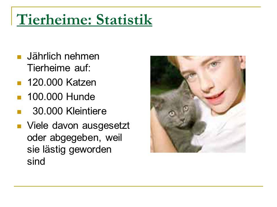 Tierheime: Statistik Jährlich nehmen Tierheime auf: 120.000 Katzen 100.000 Hunde 30.000 Kleintiere Viele davon ausgesetzt oder abgegeben, weil sie läs