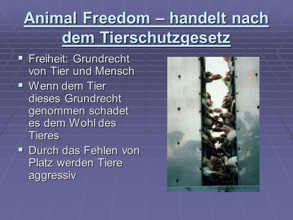 Animal Freedom – handelt nach dem Tierschutzgesetz Freiheit: Grundrecht von Tier und Mensch Freiheit: Grundrecht von Tier und Mensch Wenn dem Tier die
