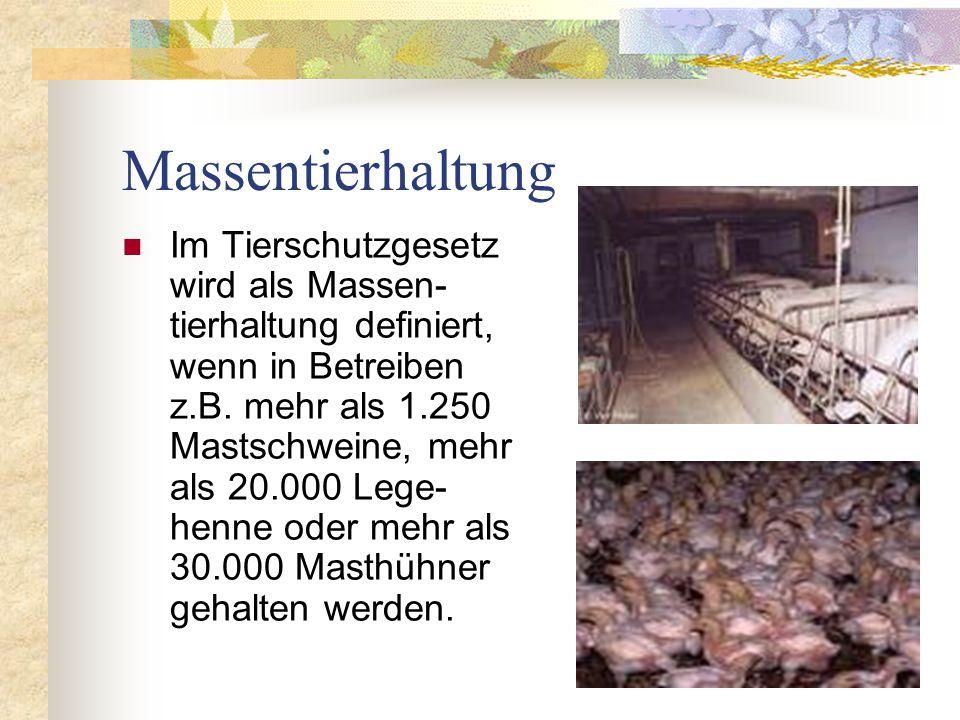 Massentierhaltung Im Tierschutzgesetz wird als Massen- tierhaltung definiert, wenn in Betreiben z.B. mehr als 1.250 Mastschweine, mehr als 20.000 Lege