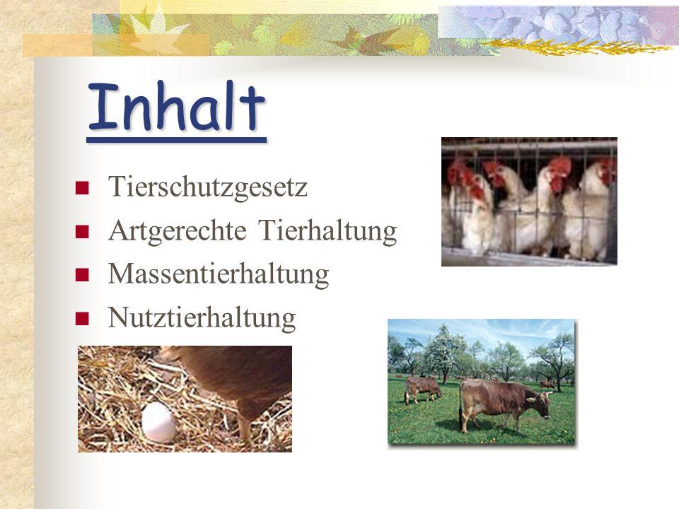 Inhalt Tierschutzgesetz Artgerechte Tierhaltung Massentierhaltung Nutztierhaltung