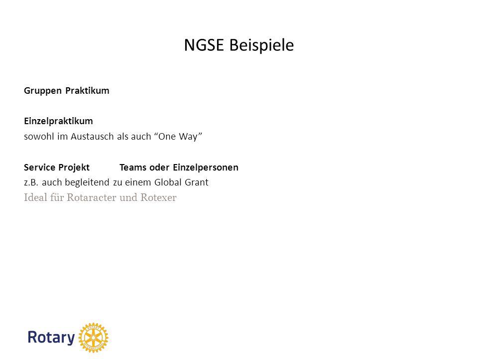NGSE Beispiele Gruppen Praktikum Einzelpraktikum sowohl im Austausch als auch One Way Service Projekt Teams oder Einzelpersonen z.B.