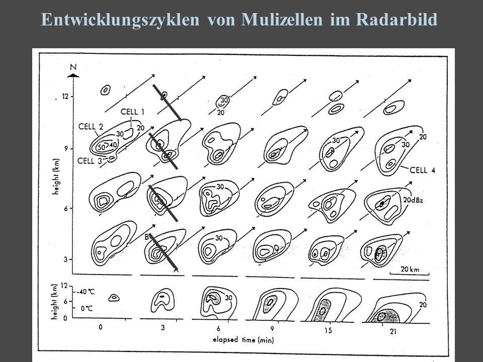 6 Entwicklungszyklen von Mulizellen im Radarbild
