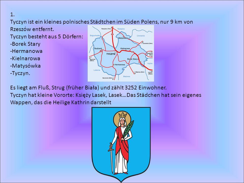 1. Tyczyn ist ein kleines polnisches Städtchen im Süden Polens, nur 9 km von Rzeszów entfernt. Tyczyn besteht aus 5 Dörfern: -Borek Stary -Hermanowa -